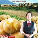 じゃがいも 2kg とうや 送料無料 1,000円ポッキリ! 北海道産 ニセコ産 低農薬栽培 M