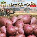 じゃがいも 送料無料 レッドムーン 5kg 北海道産 ジャガイモ 芋