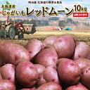 じゃがいも 送料無料 レッドムーン 10kg 北海道産 ジャガイモ 芋