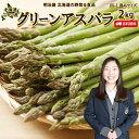 アスパラ送料無料 2kg M〜Lサイズ 北海道 ニセコ産 低...