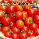 ミニトマト 2kg あまっこ 送料別 北海道 羊蹄山麓産 野菜ギフト とまと クール便 冷蔵