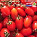 ミニトマト  3kg 品種 アイコ 北海