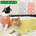 ショッピング大きいサイズ 水着 猫の術後服(後開き・ファスナータイプ)避妊手術後や傷の保護などに。日本製 [ペット服・キャットウェア]猫の服 エリザベスカラー 大きいサイズ 小さいサイズ 過剰グルーミング
