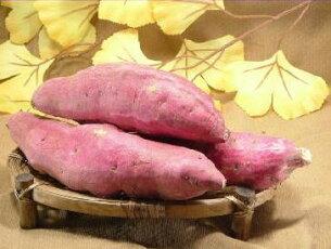 サツマイモ さつまいも さつま芋 ワケアリ
