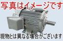 三菱電機 SF-PRO 0.75kW 2P 200V モータ (三相・全閉外扇型・屋外形) スーパーラインプレミアムシリーズ
