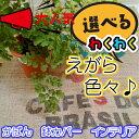麻袋 コーヒー豆 ブラジル産 ドンゴロス絵柄 選べます!(70x100cm)