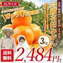 農家直送 前角園の高級有田みかん 2Lサイズ 蜜柑 3kg ...