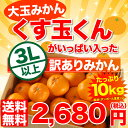 大玉みかん 10kg 送料無料 訳あり 【送料無料】【くす玉...