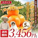 農家直送 前角園の高級有田みかん 2Lサイズ 蜜柑 5kg ギフト用(お歳暮) 有田みかん 和歌