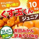 みかん 10kg 送料無料 訳あり 【送料無料】2L〜Lサイ...