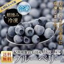 【送料無料】国産完熟!冷凍ブルーベリー 紀州和歌山有田産フレッシュ完熟ブルーベリー 1kg(500g