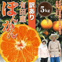 訳あり 有田 ポンカン 5kg みかん科 柑橘類 5.0kg ぽんかん 産地直送 送料無料(北海道・