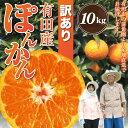 訳あり 有田 ポンカン 10kg みかん科 柑橘類 10.0kg ぽんかん 産地直送 送料無料(北海