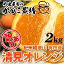 清見 オレンジ 訳あり 清見オレンジ 2.0kg 果物 フルーツ 訳あり 和歌山 有田 産地直送 オレンジ 2kg