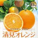 清見オレンジ 10kg 旬 果汁 清見オレンジ 有田 農家直送 種なし ジューシー 産地直送