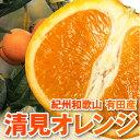 清見オレンジ(有田農家直送)送料無料 清見オレンジ 5kg 送料無料(北海道・沖縄・一部離島+500円)