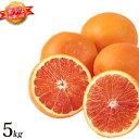 ブラッドオレンジ 和歌山 産地直送 5kg オレンジ 柑橘系 箱買い みかんの国 和歌山県産 ブラッドオレンジ5kg 国産 フルーツ 甘い 美味しい おいしい 果物 送料無料 送料込み