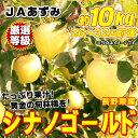 Jp-f03904