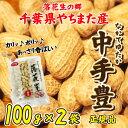 落花生 やちまた産 八街 殻付き 中手豊 なかてゆたか 100g×2袋 正規品 千葉 ピーナッツ 全国送料無料