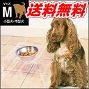 小型犬〜中型犬のフードボウル&テーブル!クリアディッシュスタンド M☆ ステンレス製ボウルとアクリル製スタンドのセット【特価セール】
