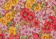 LIBERTYリバティプリント・国産タナローン生地(エターナル)<Gloria Flowers>(グロリアフラワーズ)DC10480WE