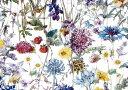 LIBERTYリバティプリント・国産タナローン生地(エターナル)<Wild Flowers>(ワイル