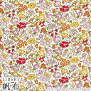 ハローキティ×リバティアートファブリック帆布〜45TH ANNIVERSARY COLLECTION(45周年