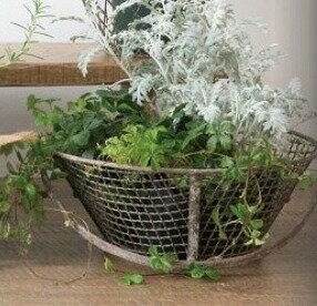 アンティーク風ガーデンバスケットLアイアン62633トレートレイ観葉植物デザイン雑貨玄関ガーデニング