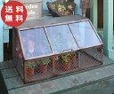 ガラスコンテナ AZ-1050 アンティーク風 ガーデンコン