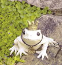 トード ガーデンオーナメント S かえる カエル フロッグ FROG ガーデンマスコット ガーデニング 置き物 オブジェ オーナメント 動物