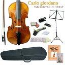 【送料無料】CarloGiordano:バイオリン VS-2【13点セット】分数サイズ 1/8■カルロジョルダーノ VS2【お取り寄せ商品】
