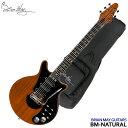 在庫あります【送料無料】The Brian May Guitars Special ブライアンメイ レッドスペ