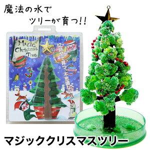 【送料無料】クリスマスツリー マジックツリー 『マジッククリスマスツリー』12時間で育つ不思議なクリスマスツリー【おとぎの国 TBS あさチャン!】