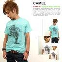 Camel_img560