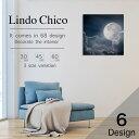 Lindo Chico Sサイズ ウォールパネル ギャラクシー 宇宙 銀河 流星群 スペース 天体
