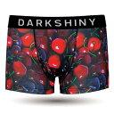 【※こちらの商品はメール便に1つまでとなります】DARKHINY(ダークシャイニー)メンズボクサーパンツ -YELLOW LABEL- FR...