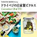 ドライベジの自家製ピクルス Cucumber きゅうり たなつもの TANATSUMONO DINING