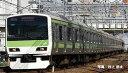 ※新製品11月発売※E231-500系通勤電車(山手線)増結セット(5両)【TOMIX・98717】「鉄道模型Nゲージトミックス」