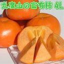 富有柿 4L サイズ 7.5 kg 【秀...
