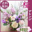 【送料無料】「桜」♪アレンジお届けは4/12まで【卒業 花 ...