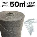 50平米分セット クラピア専用マルチシート 1m×50m(50m2)+Jピン(250本) クラピア 植栽用 吸水性 透水性 アップ