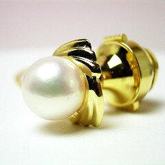 三重県真珠の画像