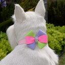 ★Susan Lanci★スーザンランシーMadison Collar犬用スワロフスキ付き首輪