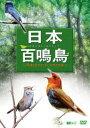 日本百鳴鳥/映像と鳴き声で愉しむ野鳥図鑑 [DVD]