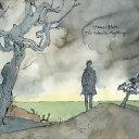 其它 - [送料無料] 輸入盤 JAMES BLAKE / COLOUR IN ANYTHING [LP]