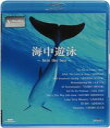 詳しい納期他、ご注文時はお支払・送料・返品のページをご確認ください発売日2007/3/21V-music 海中遊泳〜Into The Sea〜 ジャンル 趣味・教養カルチャー/旅行/景色 監督 出演 美しい映像と素晴らしい音楽を送り出すDVDレーベル「V-music」。今作品では、NHKハイビジョン撮影映像によるイルカ、クジラ、熱帯魚などの海洋生物自然の造形美と、豪華アーティストたちによる安らぎの音楽を収録したBGV作品。Blu-ray Disc版。 種別 Blu-ray JAN 4988017210604 収録時間 43分 カラー カラー 組枚数 1 音声 リニアPCM(ステレオ) 販売元 ソニー・ミュージックソリューションズ登録日2007/12/18