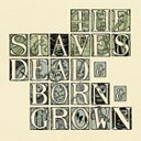CD, DVD, 樂器 - 輸入盤 STAVES / DEAD & BORN & GROWN (JEWEL CASE) [CD]