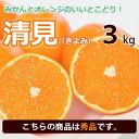 【秀品】清見オレンジ 清見タンゴール 西宇和地区八幡浜市産 約3kg 送料無料