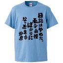 おもしろTシャツ 日記はやめた。モテ自慢ばかりになっちまうから ギフト プレゼント 面白 メンズ 半袖 無地 漢字 雑貨 名言 パロディ 文字