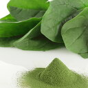 国産野菜パウダー ほうれん草パウダー 100g入。加熱せずに食べれる野菜パウダー。【アレルゲンフリー